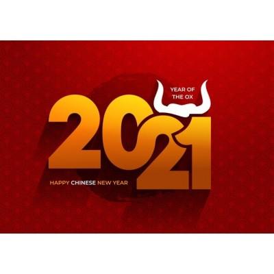 С НАСТУПАЮЩИМ 2021 годом !